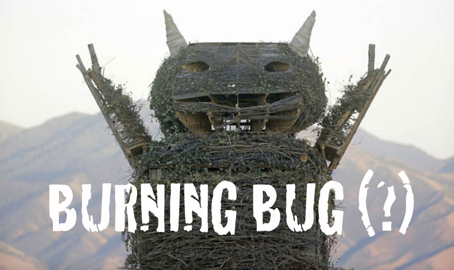 Houston we have a problem | Burning Man is infested with bugs