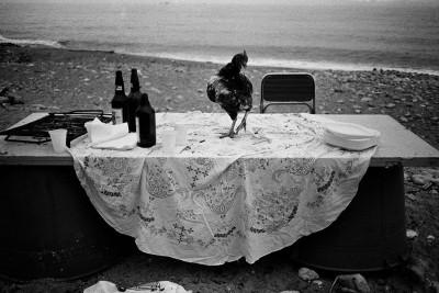 Per Pura Passione | Palermo e l'Italia dall'obiettivo di Letizia Battaglia