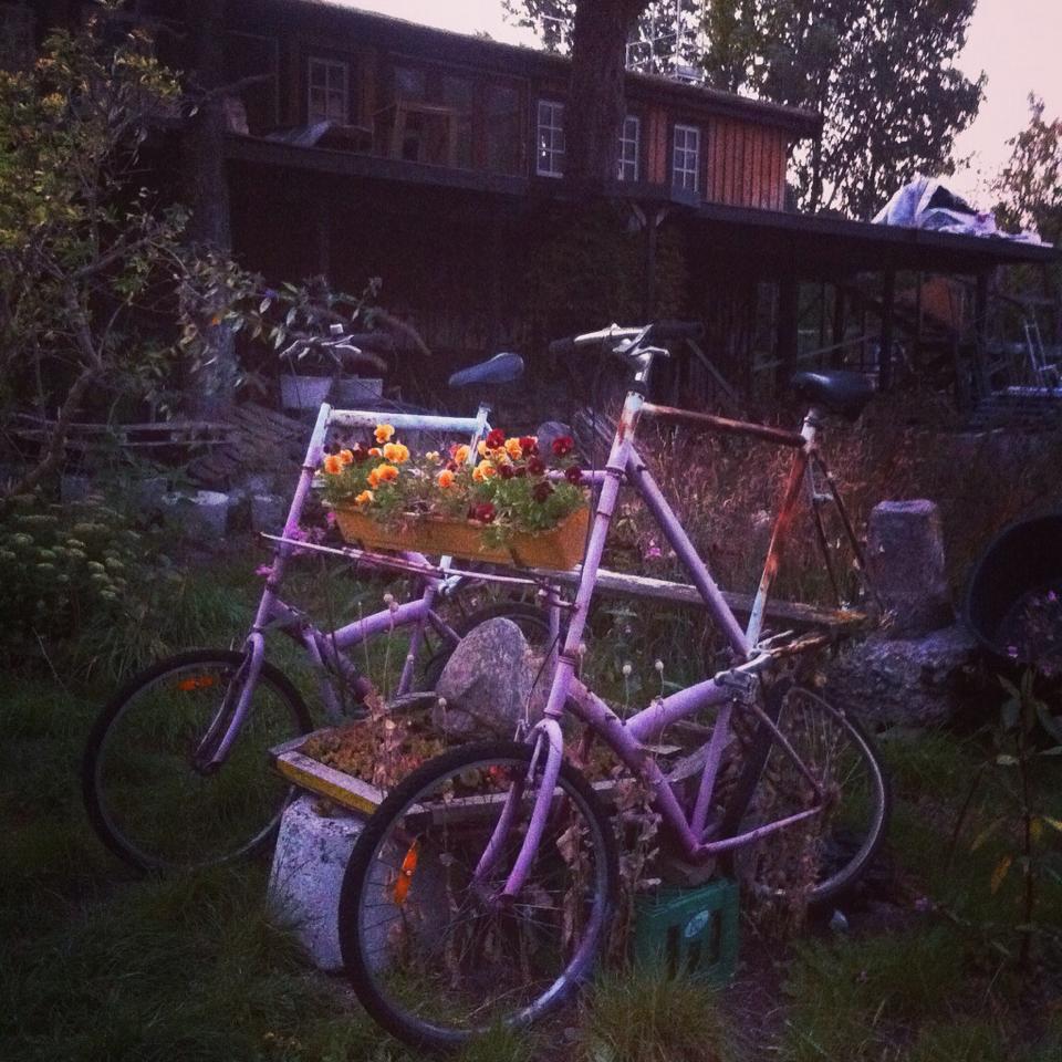 griot - mag - interview Iris Gold | Meet Denmark's New (Hippie) Role Model