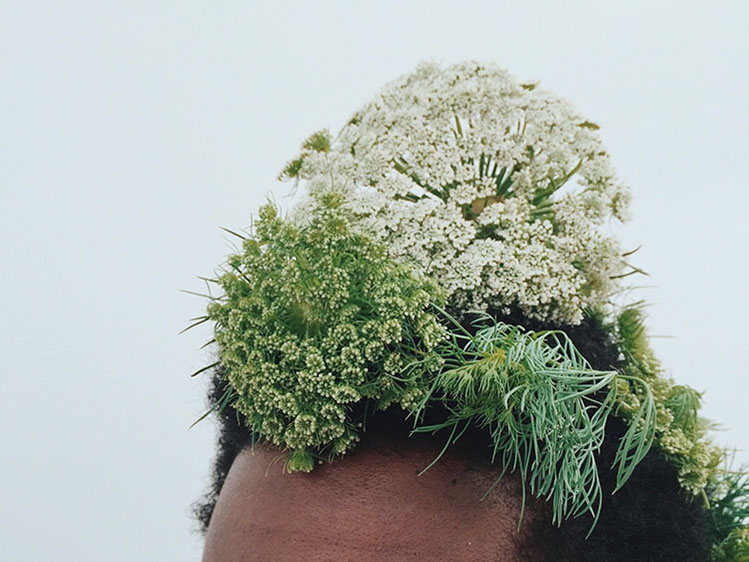 griot mag- the man who- loved flowers brandon stanciell