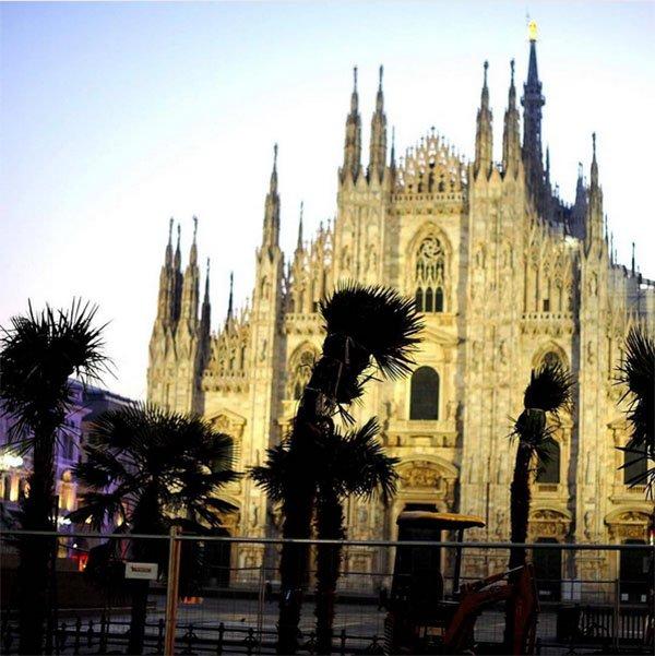 griot-mag-Salvini-le palme del Duomo sono Italiane | Parola di Matteo Foschi, l'esperto